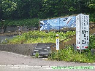 38-259高知県幡多郡黒潮町