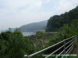 38-265高知県幡多郡黒潮町
