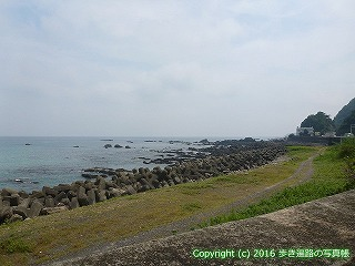 38-273高知県幡多郡黒潮町
