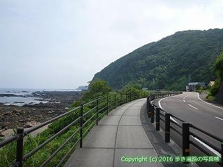 38-288高知県幡多郡黒潮町