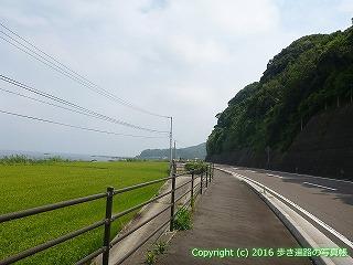 38-295高知県幡多郡黒潮町