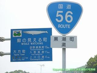 38-299高知県幡多郡黒潮町