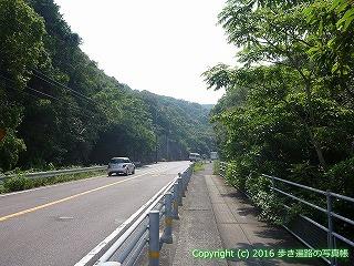 38-305高知県幡多郡黒潮町
