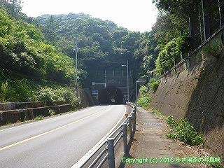 38-307高知県幡多郡黒潮町