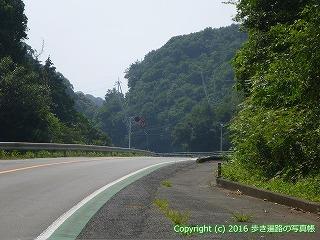 38-310高知県幡多郡黒潮町