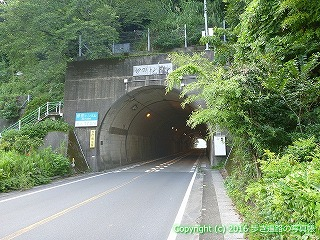 38-320高知県幡多郡黒潮町