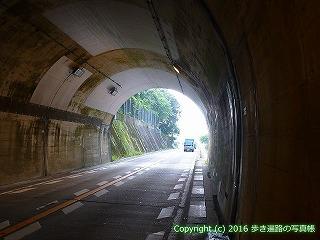 38-321高知県幡多郡黒潮町