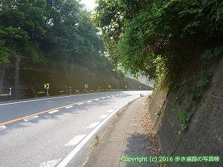 38-334高知県幡多郡黒潮町