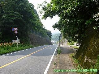38-335高知県幡多郡黒潮町