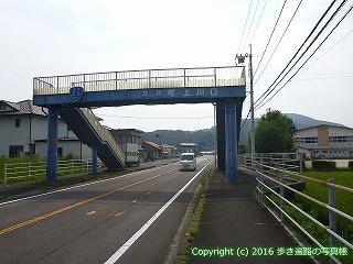 38-339高知県幡多郡黒潮町