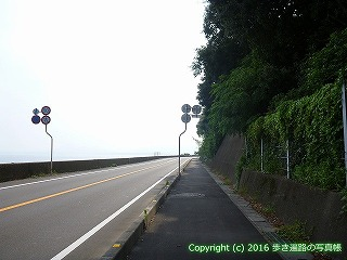 38-348高知県幡多郡黒潮町