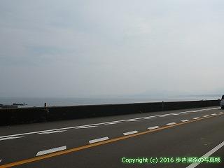 38-349高知県幡多郡黒潮町