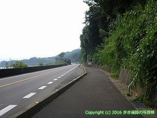 38-351高知県幡多郡黒潮町