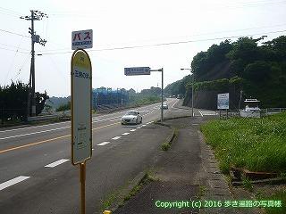 38-352高知県幡多郡黒潮町