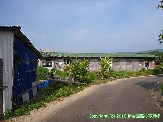 38-379高知県幡多郡黒潮町 JRA栗東トレセン預託施設