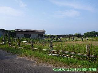 38-381高知県幡多郡黒潮町