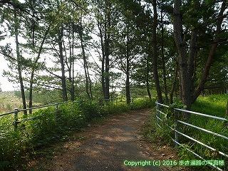 38-388高知県幡多郡黒潮町