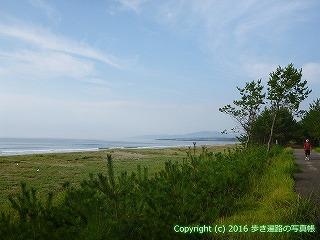 38-396高知県幡多郡黒潮町