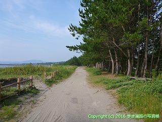 38-401高知県幡多郡黒潮町