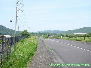 38-417高知県幡多郡黒潮町