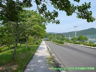 38-420高知県幡多郡黒潮町