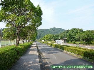 38-421高知県幡多郡黒潮町