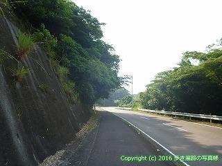 38-428高知県幡多郡黒潮町