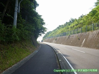 38-430高知県幡多郡黒潮町