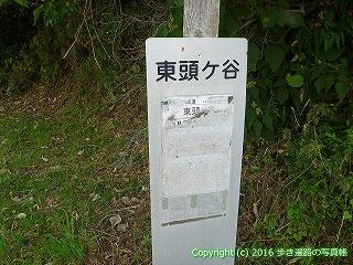 38-436高知県幡多郡黒潮町