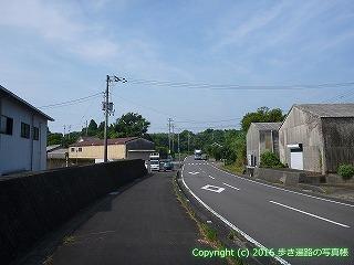 38-441高知県幡多郡黒潮町
