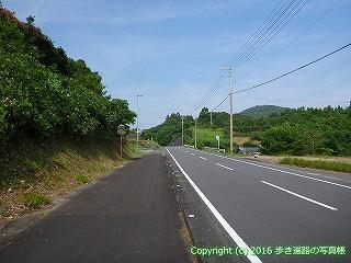 38-445高知県幡多郡黒潮町