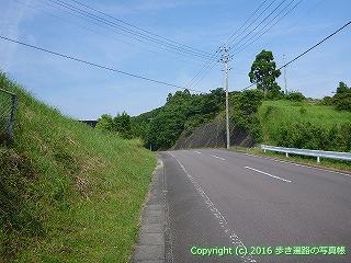 38-446高知県幡多郡黒潮町