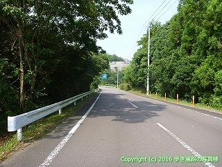 38-447高知県幡多郡黒潮町