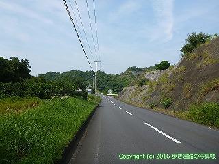38-453高知県幡多郡黒潮町