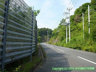 38-457高知県幡多郡黒潮町