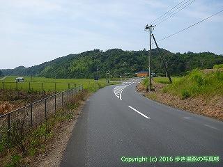 38-464高知県幡多郡黒潮町