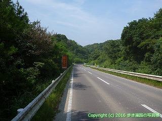38-470高知県幡多郡黒潮町