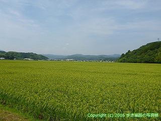 38-478高知県四万十市