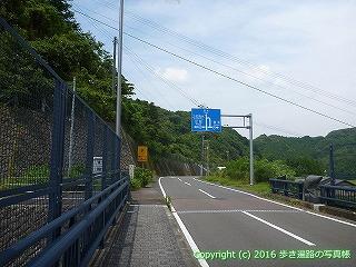 38-501高知県四万十市