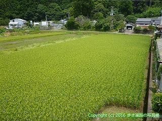 38-526高知県四万十市