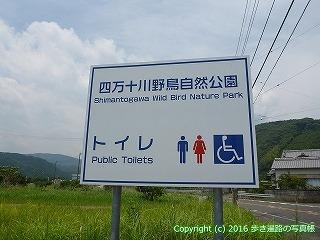 38-533高知県四万十市