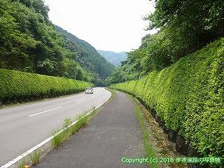 38-572高知県四万十市
