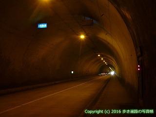 38-582高知県土佐清水市これより土佐清水市
