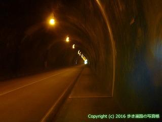 38-585高知県土佐清水市
