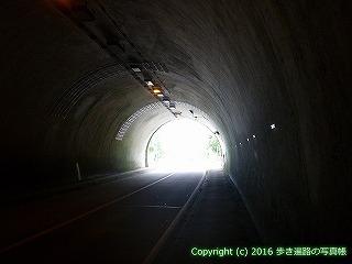 38-590高知県土佐清水市