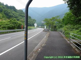 38-592高知県土佐清水市