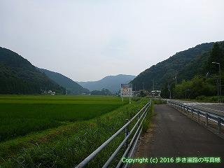 38-611高知県土佐清水市