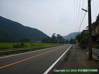 38-614高知県土佐清水市
