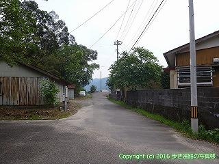 38-616高知県土佐清水市