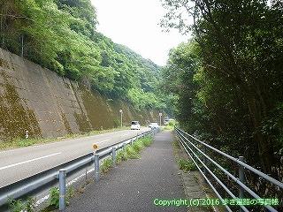 38-628高知県土佐清水市